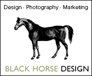 Black Horse Design (Cheshire Horse)
