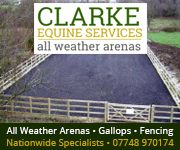 Clarke Equine Services  2018 (Cheshire Horse)