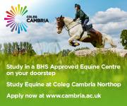 Coleg Cambria 10 (Cheshire Horse)