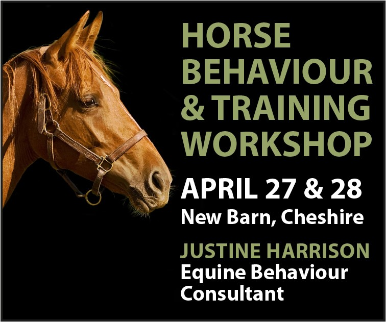 Justine Harrison Workshop April 2019 (Cheshire Horse)