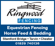 Ringwood Fencing 1 (Cheshire Horse)