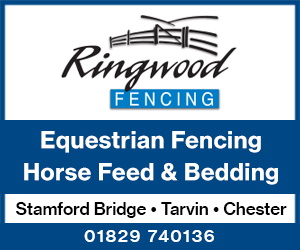 Ringwood Fencing 3 (Cheshire Horse)