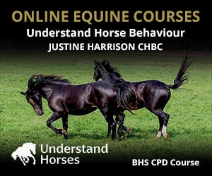UH - Understand Horse Behaviour (Cheshire Horse)