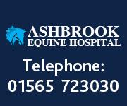 Ashbrook Equine Hospital 5 (Cheshire Horse)