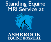 Ashbrook Equine Hospital 5d (Cheshire Horse)